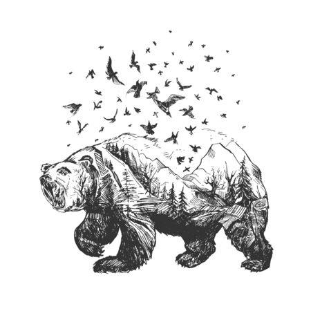 Vector illustration of wild bear silhouette sketch drawing. Formidable animal transitioning into forest and birds flying away. Vintage hand drawn style.  イラスト・ベクター素材