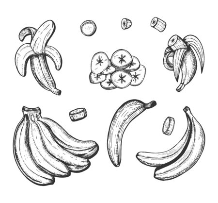 Vector illustration of banana set. Single, chips, sliced, bunch, open, closed, pieces. Vintage hand drawn style.