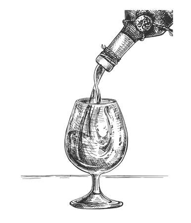 Vector illustration of the red wine being poured into a glass. Alcohol serving and drinking degustation by professional sommelier. Vintage hand drawn engraving style.
