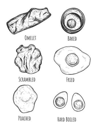 Vector illustration of chicken egg cooking options and dish. Omelet, baked, scrambled, fried, poached, hard boiled prepared poultry product. Vintage hand drawn style.