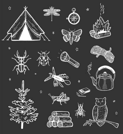 Vector illustration of camping attribute, travel accessories. Tent, flashlight, campfire, insect, owl, fir, kettle, rope, compass, firewood, matches on dark starry background. Vintage hand drawn style