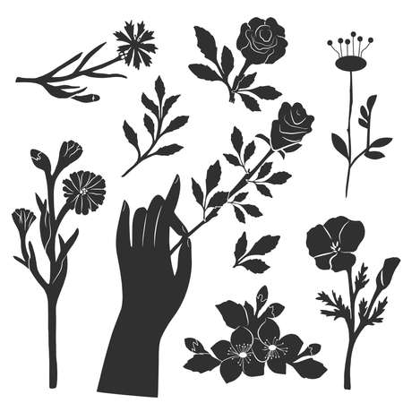 Vector illustration of different spring flower stencil. Blooming bud, stem and leaves. Female hand holding rose. Vintage hand drawn style.