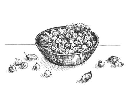 Vector illustration of chickpeas bowl. Healthy protein source, pantry staple beans food. Hummus and fallafel ingredient. Vintage hand drawn engraving etched style. Çizim