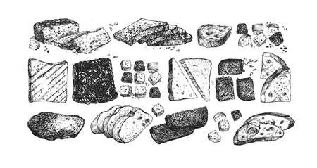Vector illustration of sliced baked products set. Different shape slices with caraway seeds, sesame seeds, raisins, butter canapes, black, gray and white soft tack. Vintage hand drawn style.