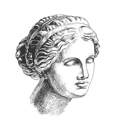 Vector hand drawn illustration of Aphrodite (venus de milo) head greek sculpture drawn in engraving technique in vintage engraved style. Isolated on white background.