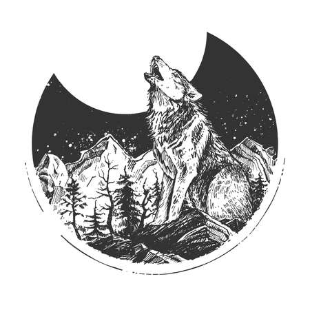 Vector hand drawn illustration of wild wolf howling at full moon standing on stone in mountain forest. Night natural landscape emblem in vintage engraved style. Isolated on white background. Ilustracja
