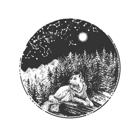 Vector hand drawn illustration of wild wolf resting on stone in mountain pine forest under dark night starry sky in vintage engraved style. Isolated on white background.