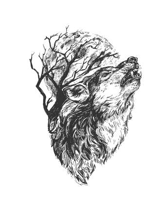 Vector hand drawn illustration of wild fanged wolf howling in vintage engraved style. Animal portrait isolated on white background. Ilustracja