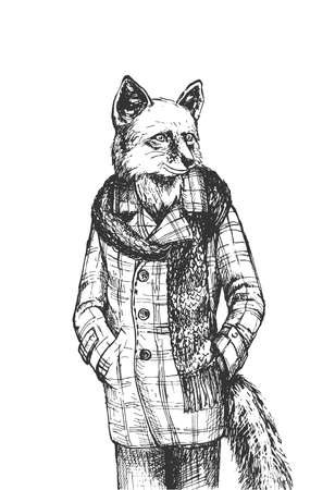 Vector hand drawn illustration of mister fox man character wearing warm fashion autumn clothes as tweed coat and scarf in vintage engraved style. Animal portrait isolated on white background. Ilustracja