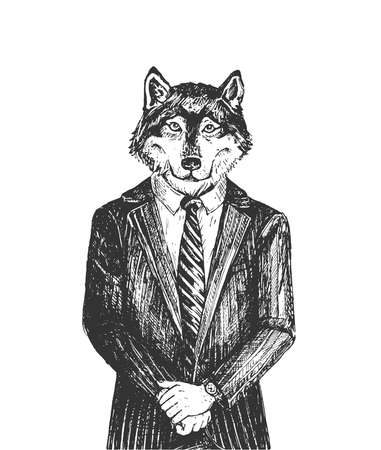 Vector hand drawn illustration of brutal man wolf from wall street wearing elegant classic suit in vintage engraved style. Portrait isolated on white background.