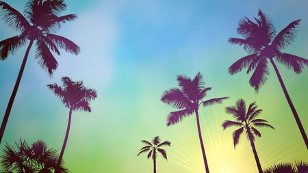 Panoramic view of tropical landscape with palm trees and sunset, summer background. Elegant and luxury 80s, 90s retro style 3D illustration