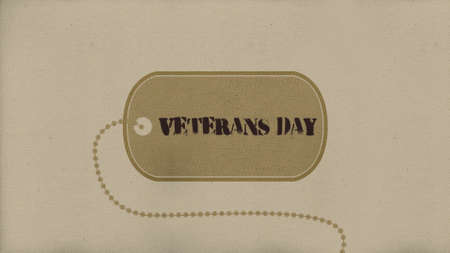 Text Veterans Day on military background with military badge. Elegant and luxury 3d illustration for military and warfare template Stockfoto