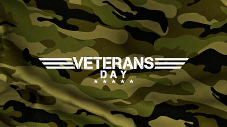 Text Veterans Day on green military background. Elegant and luxury 3d illustration for military and warfare template