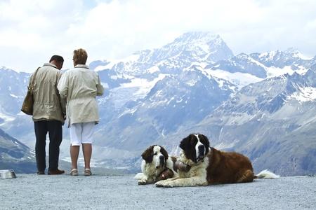 Deux paires d'amoureux au Cervin, en Suisse. Banque d'images