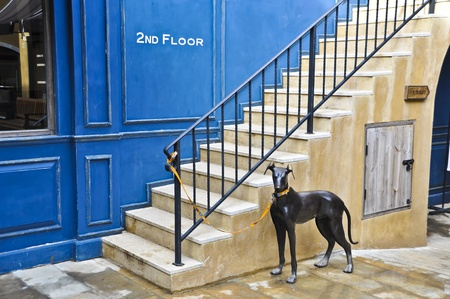 Watch dog. Stock Photo - 11386206