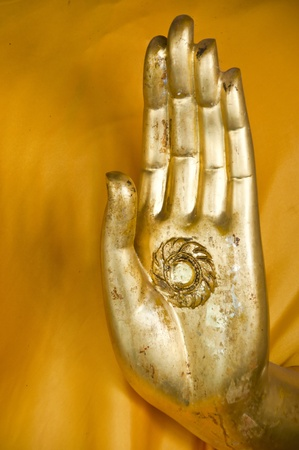 Hand of Buddha. photo