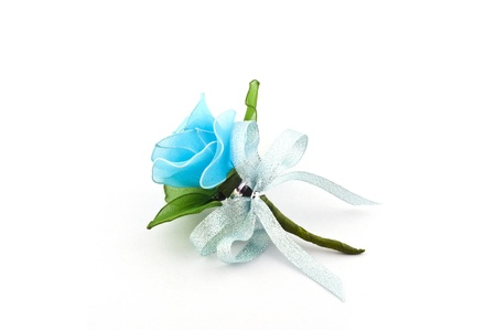 Blue rose isolate  photo