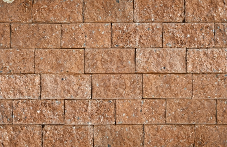 Laterite brick wall Stock Photo - 14209281