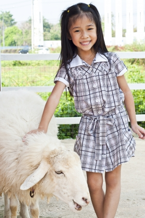 Little asian girl and sheep Stock Photo - 18448501