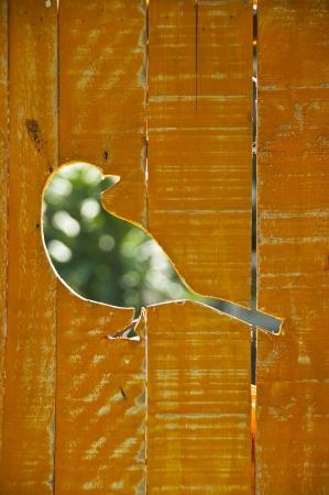 Bird Stock Photo - 18496888