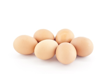 Chicken egg  Stock Photo - 18496861