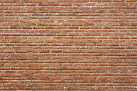 Mur de briques Banque d'images - 19241701