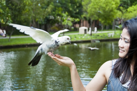 Pretty Asian woman and pigeon  Stock Photo