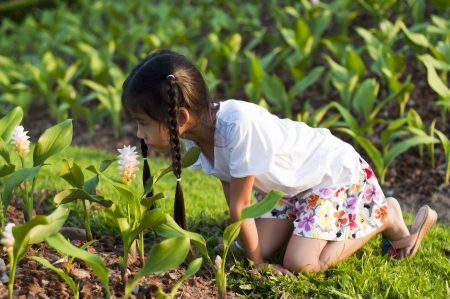 Little Asian girl smelling flower  photo