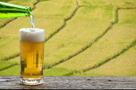 Enjoy beer with paddy field landscape