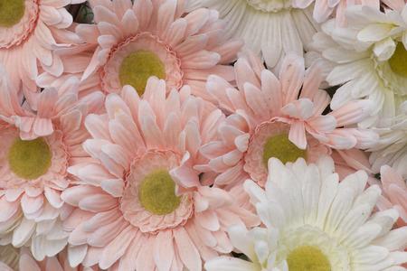 artifact: Pink artifact flower.