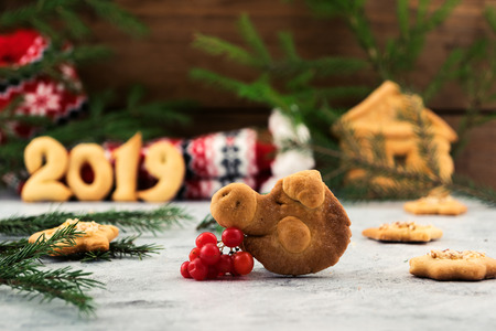 Cookies in the shape of a pig's head – a symbol of 2019 on the background of Christmas decorations.