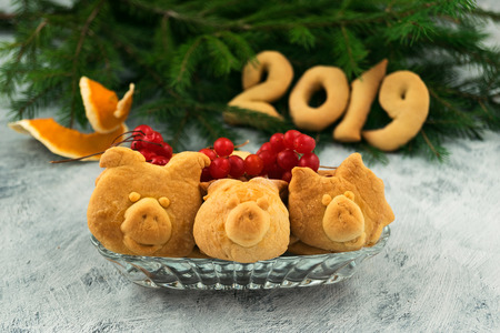 Christmas cookies in the form of piglets  heads with red berries of viburnum, figures 2019 of dough, branches of green spruce.