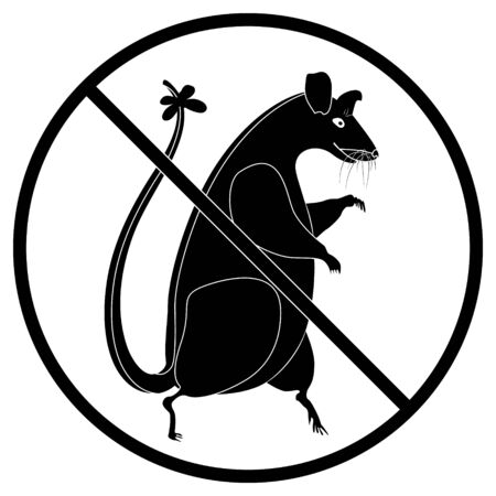 Ban for rats. Round prohibition sign and big rat. The concept of environmental protection from harmful rodents.