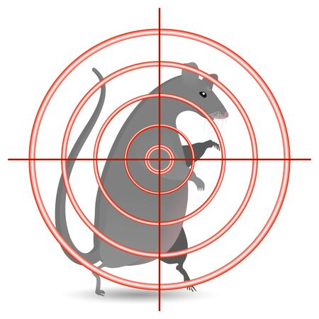 Red circle target aimed at a large gray rat. The concept of hunting for harmful rodents. Rat under the gun. Çizim