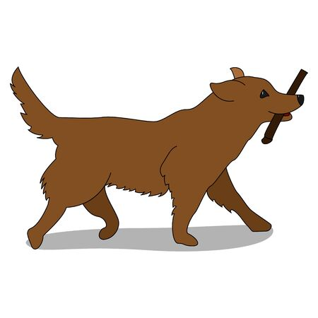 Dog Training. Golden Retriever with a stick on a white background. Playing with the dog. Train pets. Illusztráció