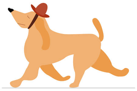 The dog runs in a fashionable hat with eyes closed. An arrogant dog raised his nose. Pet for fashionable exhibition. Vector, isolated on white, style flat.