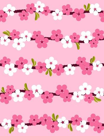Cherry blossom. Seamless background.  Vector