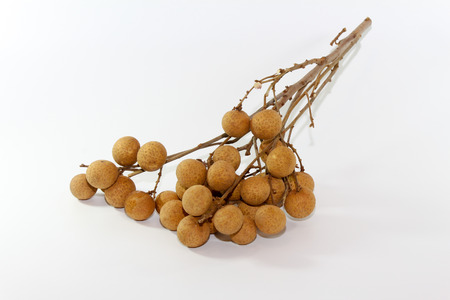 translated: Mata Kuching fruit or literally translated as Cat Eye Fruit , a subspecies of the Longan Fruit over white background. Stock Photo