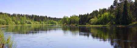 Panorama of a summer landscape with the river and wood Stock Photo