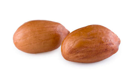 Two peanut`s on a white background. Cose-up view.
