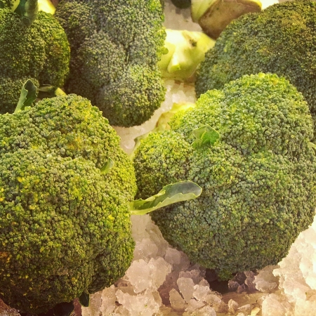 brocolli: green fresh brocolli