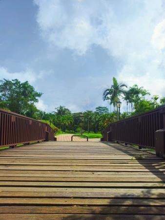 titiwangsa: Bridge at titiwangsa park