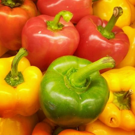 Fresh colorful capsicum