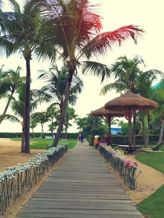 Beautiful panorama of recreational public park at Forest City