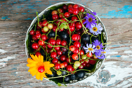 gooseberry bush: a plate of leaves and berries of black and red currant with a flower on a wooden background top view Stock Photo