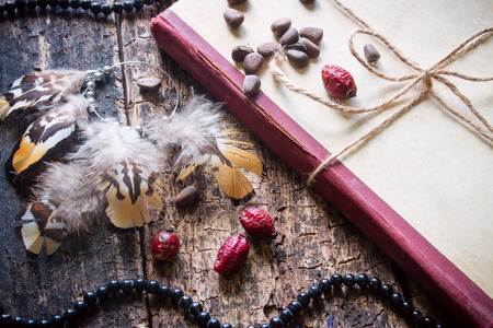 corded: Corded book with beads, dogrose, pine nuts and earrings with feathers Stock Photo