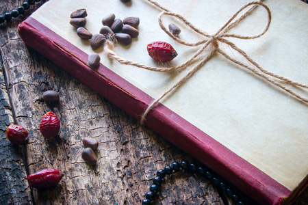 corded: Corded book with beads, dogrose, pine nuts