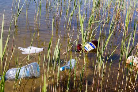 mundo contaminado: basura en el agua entre los juncos Foto de archivo