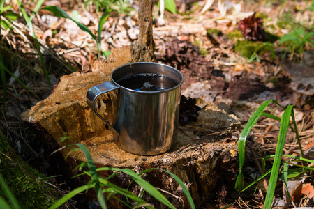 a mug of tea on an old stump with moss and cones Stock Photo