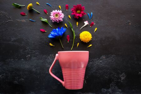 flowers, petals and herbs from a pink mug on a black background 写真素材